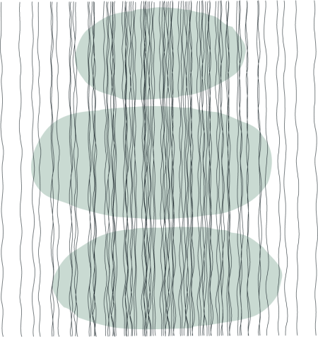 modern lines